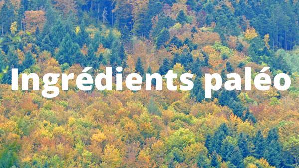 les ingrédients paléo font-ils la recette paléo ?